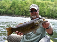 New_river_smallie